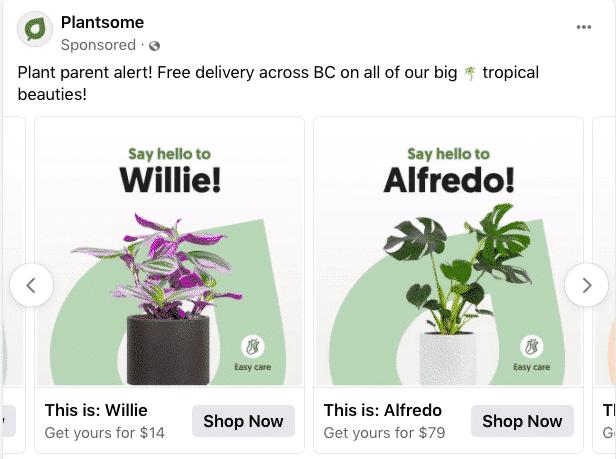 Plantsome Shop Now Carousel ads