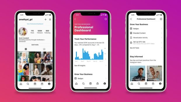 Instagram Professional Dashboard for businesses and creators: profile view, dashboard analytics view, dashboard settings view