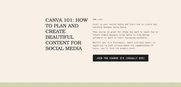 Canva 101 from Joelle Studio