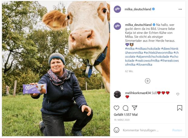 """Milka stellt eine der """"echten Kühe"""" hinter seiner Alpenmilchschokolade vor."""