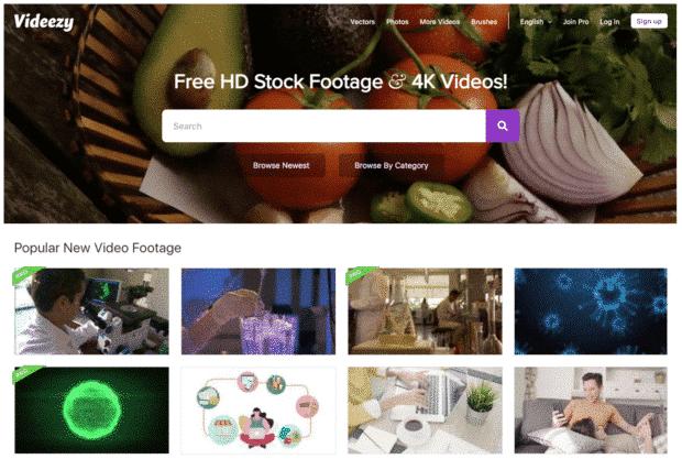 videezy free stock video site
