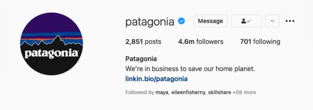 Patagonia Instagram bio states their brand values