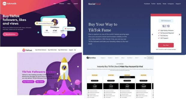 various pages of the website from which you can buy TikTok followers