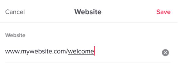 enter URL under website