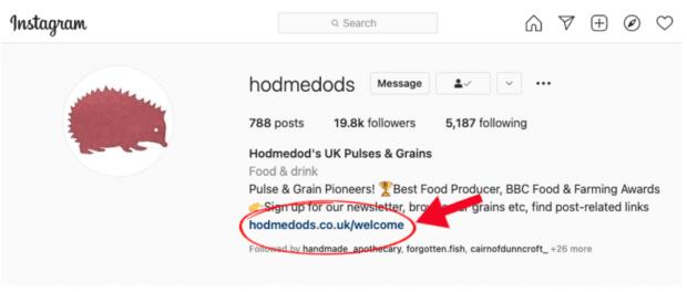 Hodmedod customized link in bio