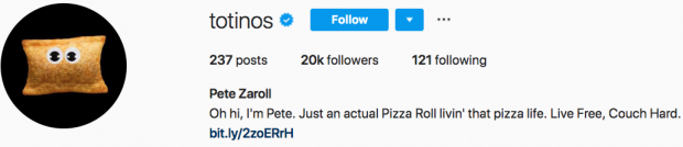 Totinos Instagram bio